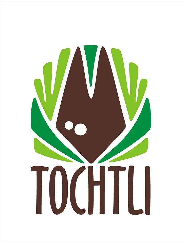 Tochtli