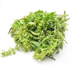 albahaca fresca orgánica